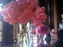 Peonies on display at Lu San